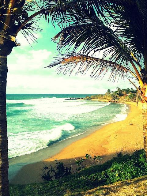 Beach at Guajataca, PR