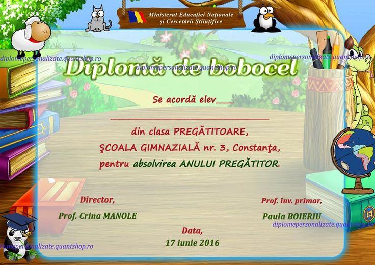 B211-Diploma-de-bobocel-nepersonalizata-M-12.jpg (800×566)