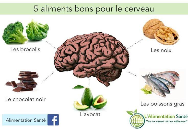 5 aliments bons pour le cerveau
