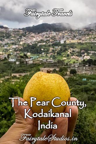 Camping with Comfort @ Pear County, Kodaikanal | Fairytale Studios | India | Photography - Travel - Blog |