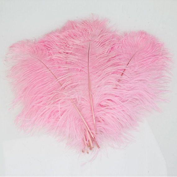 SACCO DI piume di 10 rosa  piume di struzzo piume di Magnicity