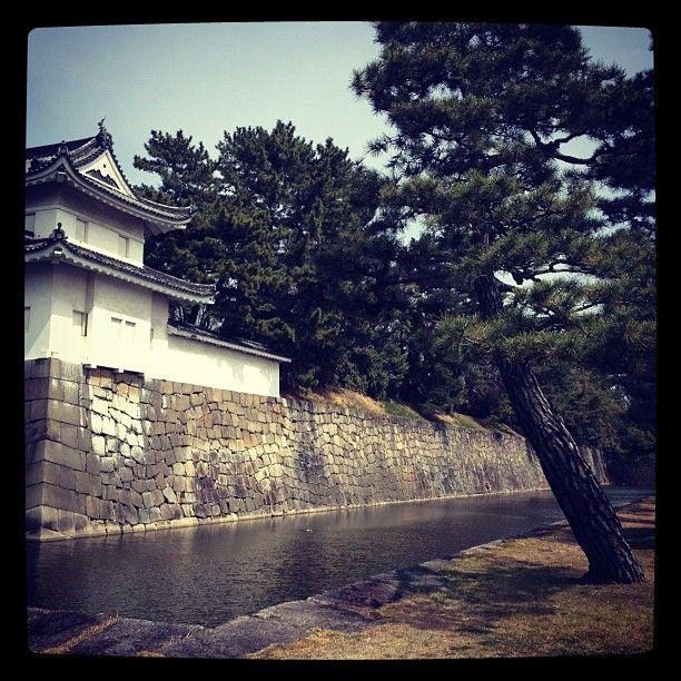 O Nijō-jō ou castelo de Nijō (二条城, Nijō-jō?) situa-se em Quioto, Japão. Foi Tokugawa Ieyasu que o mandou construir em 1603. É constituído por dois círculos concêntricos de fortificações contendo dois palácios, o Palácio Ninomaru (二の丸) e o Palácio Honmaru (本丸), diversos edifícios de apoio e vários jardins. Cobre uma área total de 275 000 m² da qual 8 000 m² de construções.