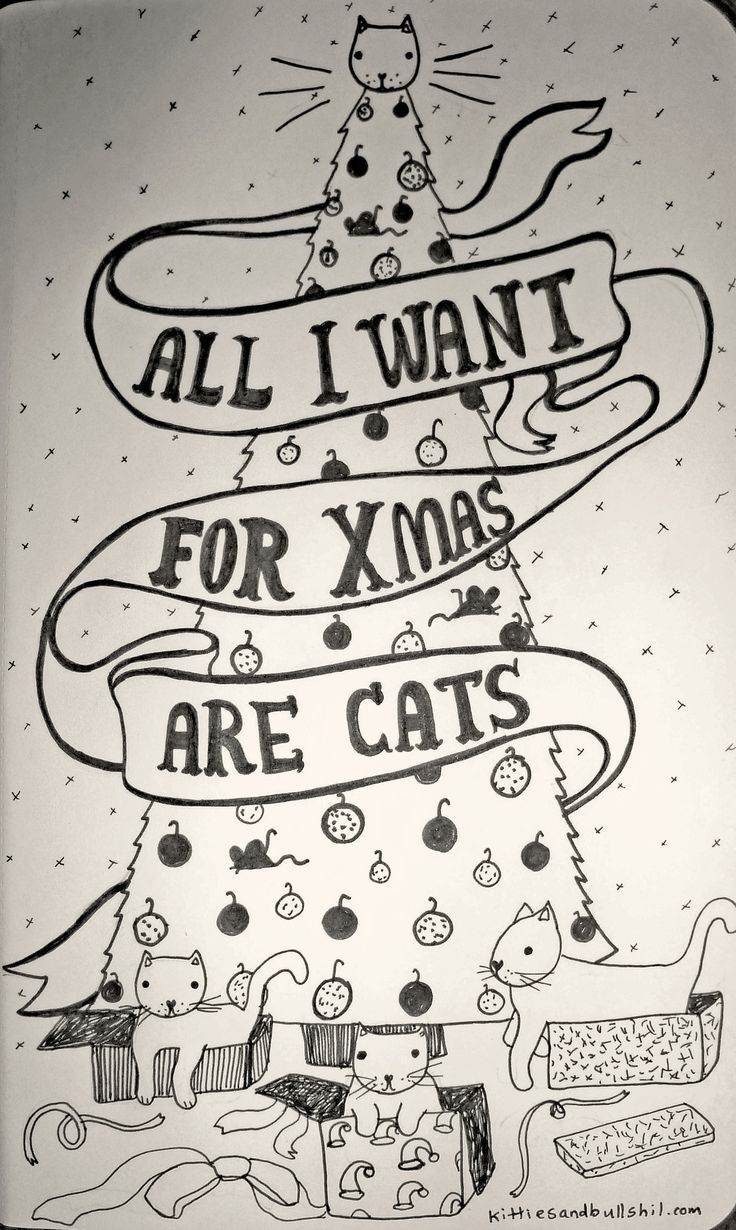 All I want for Xmas are Cats!