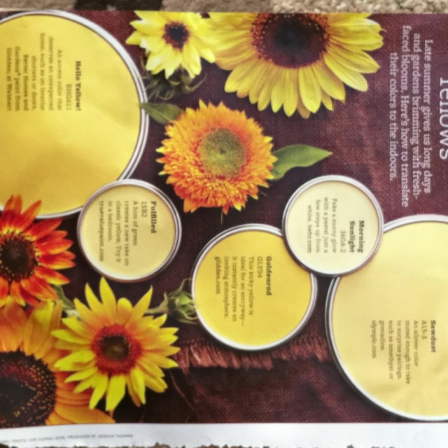 sunflower yellow paint colors found in bhg