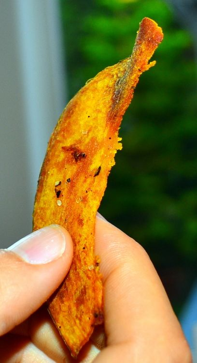 Roasted Kabocha Squash Chips
