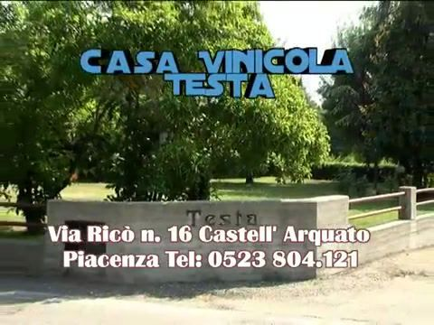 Castell'Arquato in Piacenza, Emilia-Romagna TESTA - Vini DOC