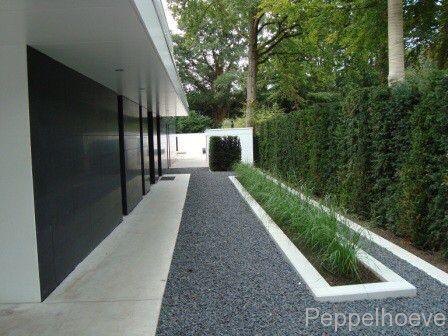 Afbeelding van http://www.peppelhoeve.nl/wp-content/uploads/2013/03/DSC01437.jpg.
