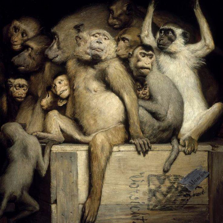 von Max, Gabriel Cornelius / monkeys final