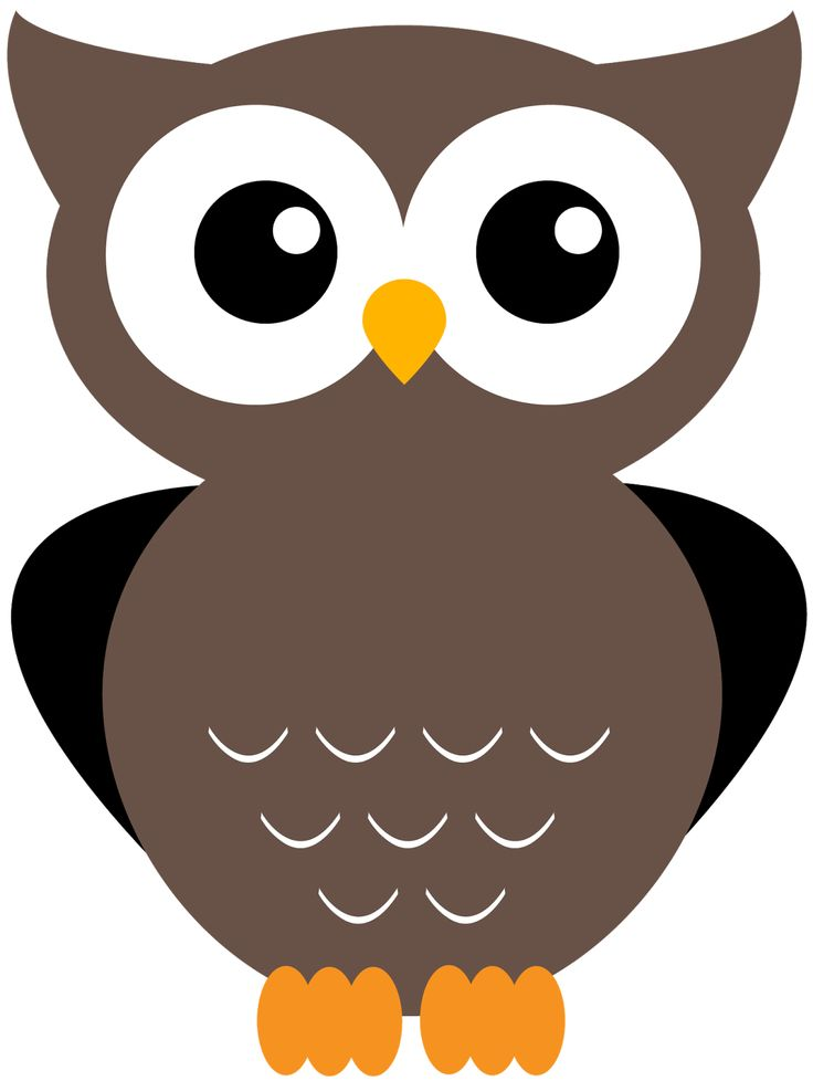 123 best owl clipart images on pinterest snood owls and owl rh pinterest com clip art owls cute clip art owl outline