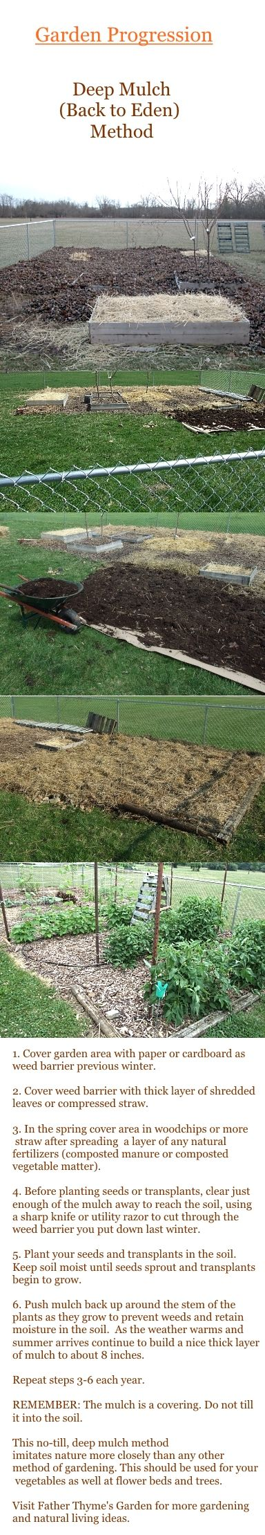 39 Best Images About Back To Eden Gardening On Pinterest Gardens Diy Compost Bin And Raised Beds