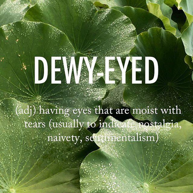 Dewy-eyed |ˈd(y)o͞oē ˌīd| 1930s origin . . #beautifulwords #wordoftheday #dewyeyed #dew #drop #tears #fresh #lotus #leaves #zen #green #naive #nostalgic #nostalgia #sentimal #sentiment #부여궁남지 #nature