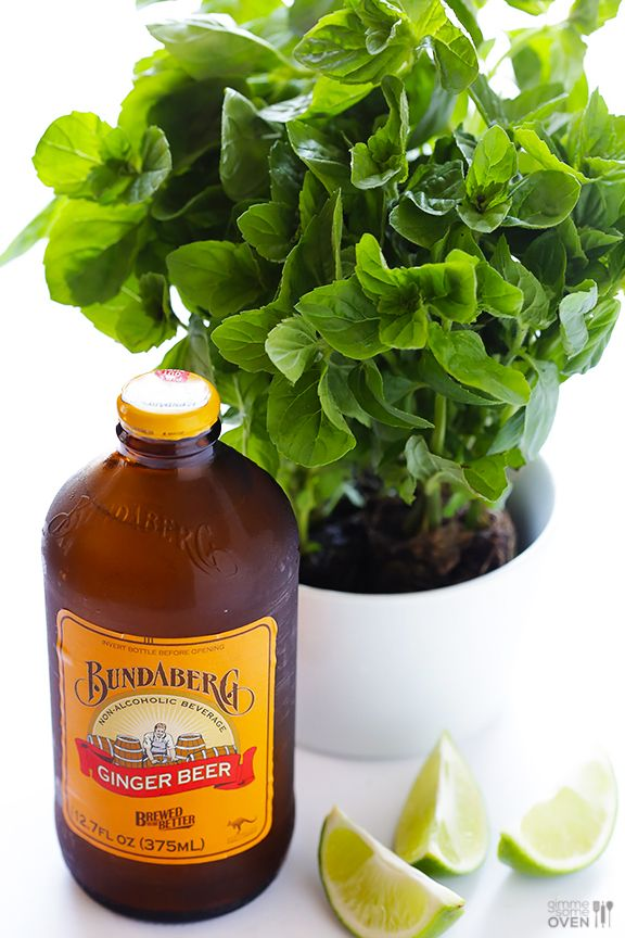 Best 25 ginger beer mojito recipes ideas on pinterest for Cocktail ginger beer