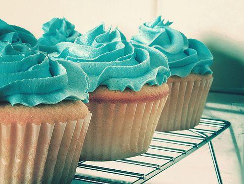 cupcake teal