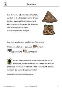 Cool Ameisen Ampelheft Gr n