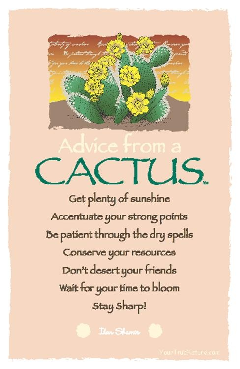 Cactus Sayings Images - Reverse Search