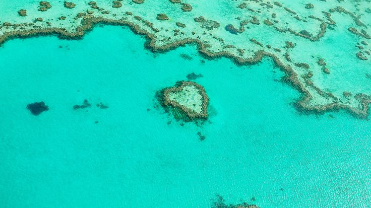 "Heart Reef - The well known Heart Reef from above | Great Barrier Reef in Australia <a href=""https://www.instagram.com/martin_wasilewski/"">Instagram</a>  <a href=""https://de-de.facebook.com/Martin.Wasilewski.Photos"">Facebook</a>  <a href=""https://www.flickr.com/photos/martin_wasilewski"">Flickr</a>"
