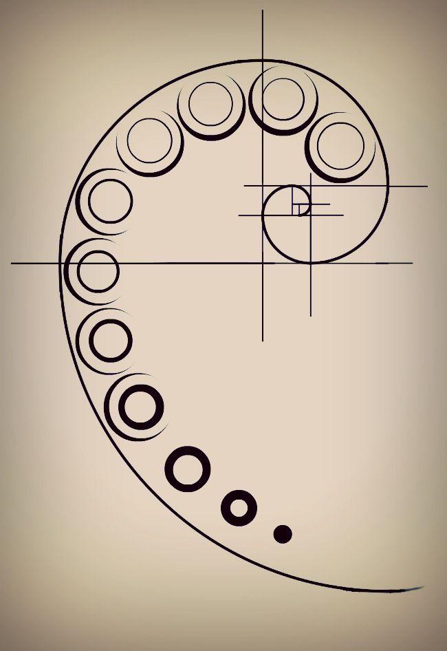 Fibonacci Sequence Tattoo | www.pixshark.com - Images ...