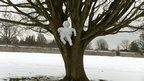Snowman in Sevenoaks, Kent