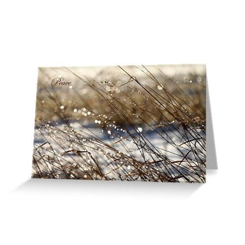 Natures bling holiday greeting card peace blank https natures bling holiday greeting card peace blank https m4hsunfo