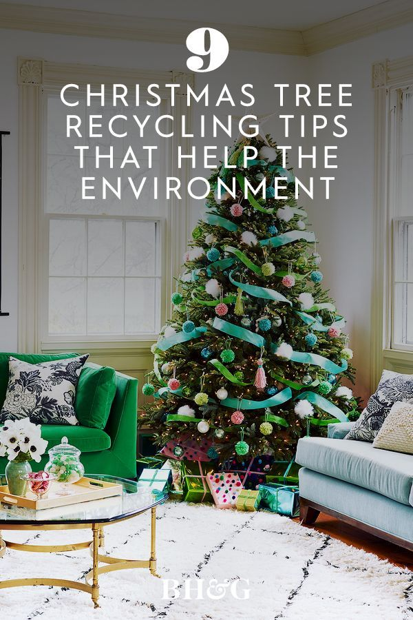 Help The Environment With These 9 Christmas Tree Recycling Tips Christmas Tree Recycled Christmas Tree Christmas