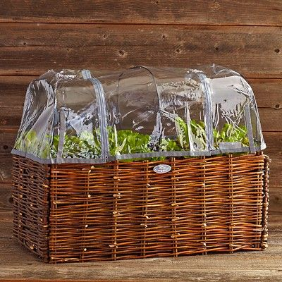 Natural Willow Vegetable Planter Greenhouse Cover with Supports #WilliamsSonoma
