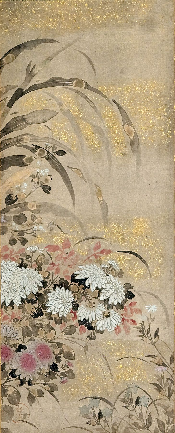 Burke Collection | Flowers of Autumn