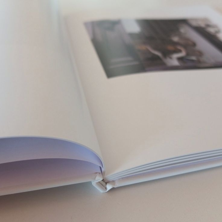 Minor Collisions  Photography by  David Wilson  Text: Paul Newland  2015  Size of the book: 21 x 28 cm  64 pages – Four-colour printing  Hardcover package  Published in English  Cover price: 35,00 Euro (VAT included)