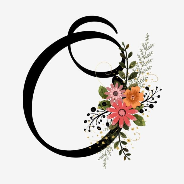 Alfabet Litery O Kwiaty I Galezie Letras Del Alfabeto Abecedario Lettering Fotos De Letras
