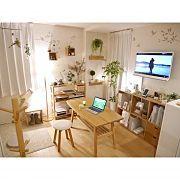 観葉植物/片付け/日替わり投稿企画!土曜日/玄関/入り口に関連する他の写真