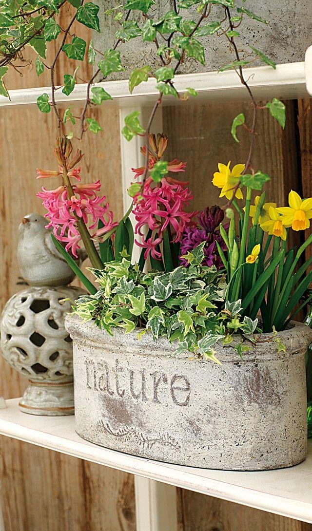 les 52 meilleures images propos de pot es fleuries sur pinterest belle planters et tour de. Black Bedroom Furniture Sets. Home Design Ideas