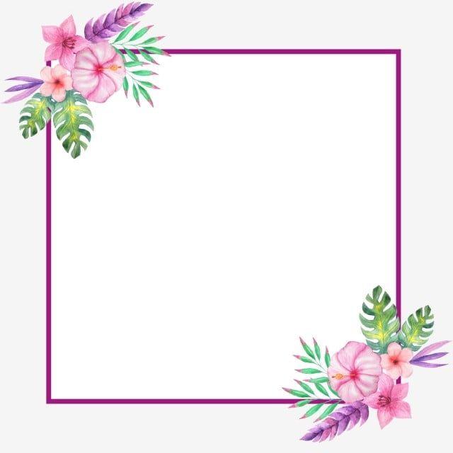 ทาส ม อดอกไม ใบชายแดนตกแต งดอกไม ตกแต งกรอบ ตกแต งร ปแบบการตกแต งกรอบ พ ชท วาดด วยม อ ดอกไม ภาพ Png และ Psd สำหร บดาวน โหลดฟร Flower Png Images Flower Frame Watercolor Flower Background