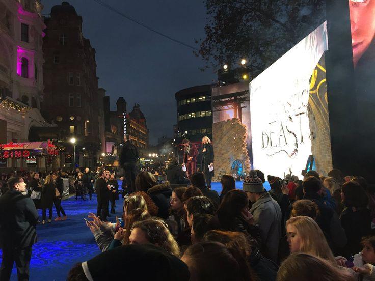 32 Best Fantastic Beasts Graves Premiera London 15.11.2016
