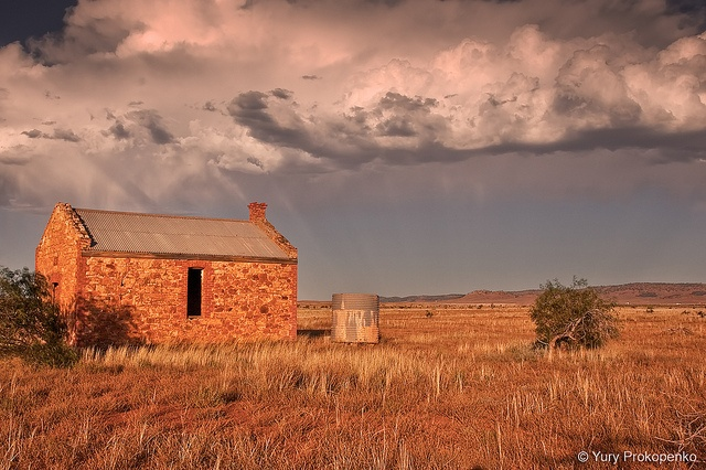 Abandoned cottage near Hawker, South Australia