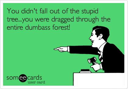 You didn't fall out of the stupid tree...