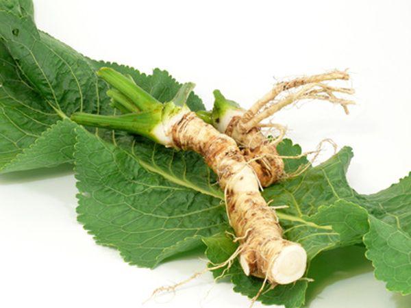 Chrzan pospolity (warzęcha, warzucha) swoją karierę jako przyprawa rozpoczął w średniowieczu. Ma więcej witaminy C niż cytryna. Jest rośliną wieloletnią.