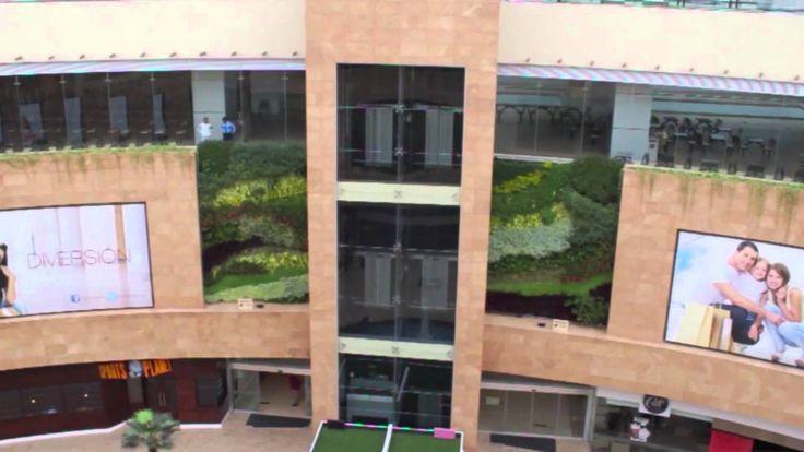 Jardines verticales por el mundo ecuador quito parte 1 for Jardines verticales quito ecuador