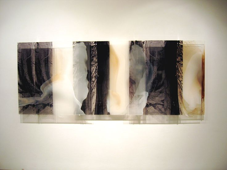 "Janet Laurence ""ghosting light"" Selva Veils, 2005"