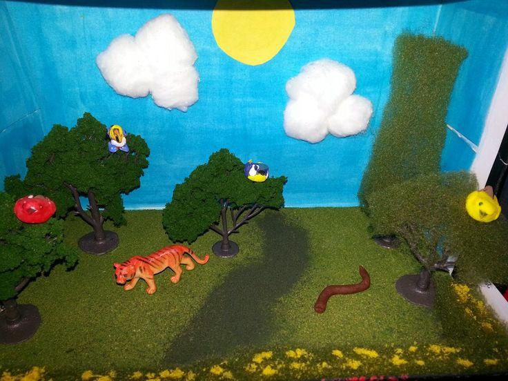 habitat shoebox diorama kids pinterest habitats and dioramas. Black Bedroom Furniture Sets. Home Design Ideas
