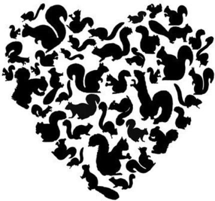 Squirrel Love print