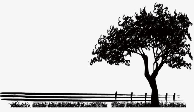 Trees Silhouette Png And Vector Tree Silhouette Silhouette Black Tree