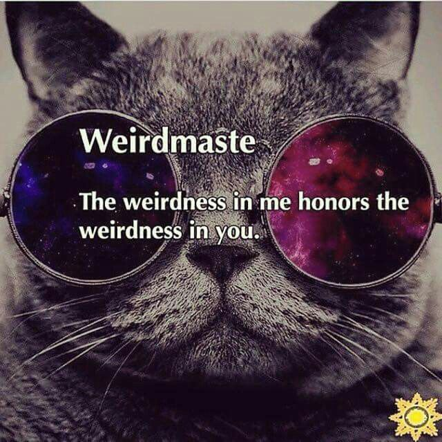 Weirdmaste - The weirdness in me honors the weirdness in you. ♡♡♡