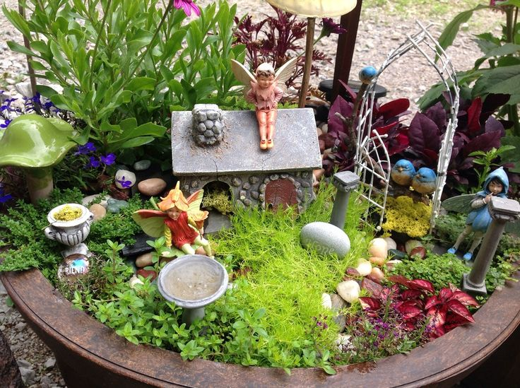 25 best ideas about large fairy garden on pinterest diy - Miniature plants for fairy gardens ...