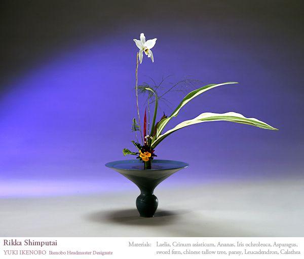 Ikenobo Headmaster Designate Yuki Ikenobo Works : 池坊の生け花