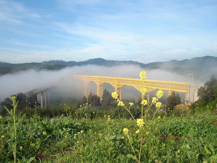 Viaducto del Malleco en Collipulli. Foto de Pablo Pereira Pereira.