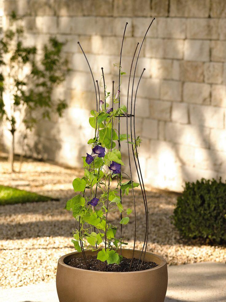 Planter Trellis | Pot Trellis | Powder-Coated Steel | Gardener's Supply