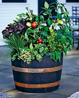 Whiskey barrel planter... excited to get a whiskey barrel vegetable garden going!