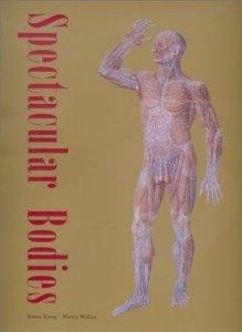 Amazon.com: Spectacular Bodies: The Art and Science of the Human Body from Leonardo to Now (9780520227927): Martin Kemp, Marina Wallace: Books