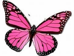 Spiritual Awakening: 2014 The Year Of Transformation | Spiritual Awakening