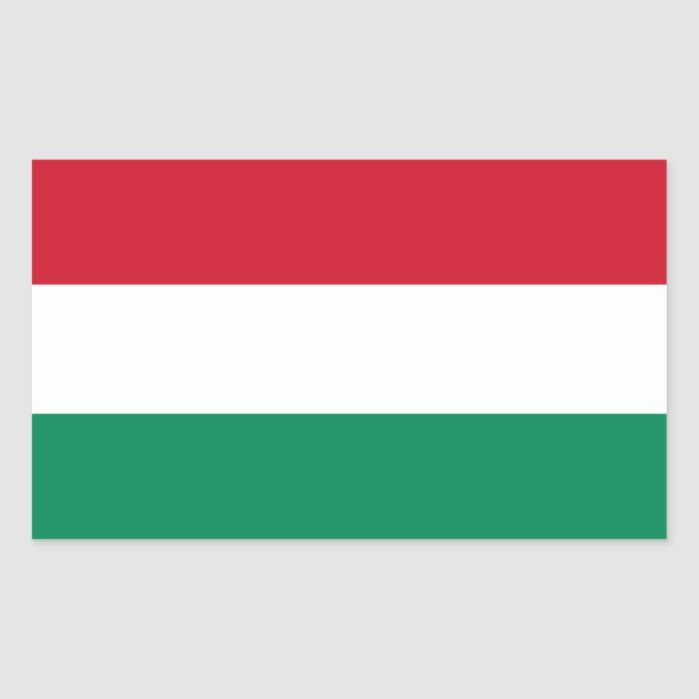 Hungary Hungarian Flag Rectangular Sticker Zazzle Com In 2020 Hungarian Flag Hungary Flag Print Stickers