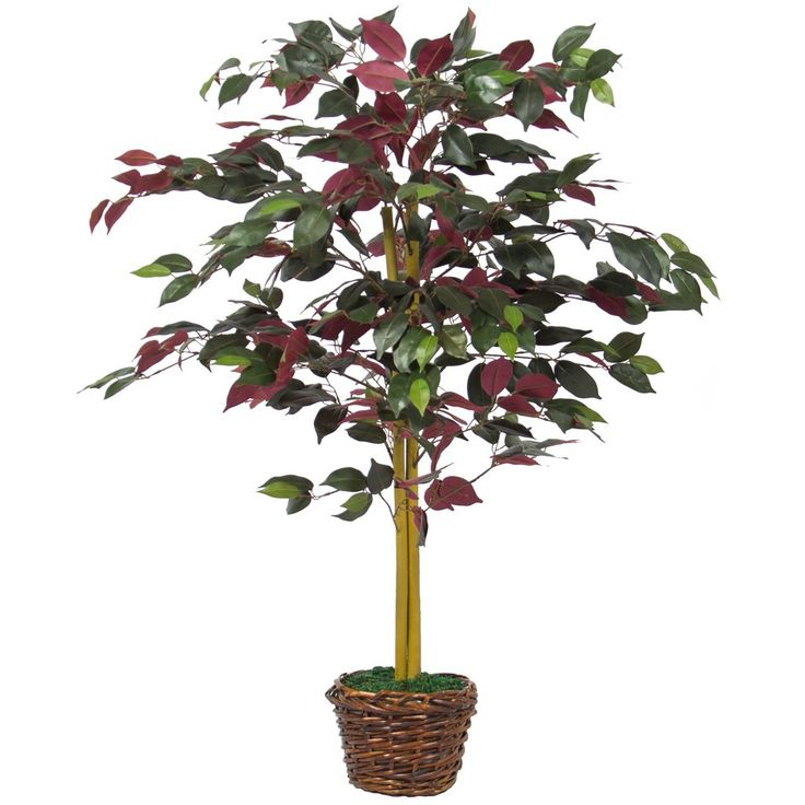 Best Choice Products 4 FT Decorative Artificial Tree Capensia Bush